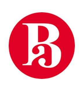 logo bib anglo